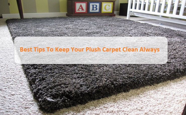 Best Tips To Keep Your Plush Carpet Clean Always | Sydney Metro Carpet Cleaning Blog