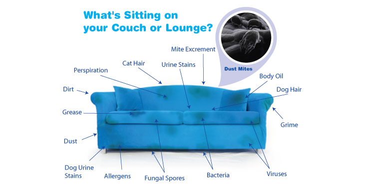 What sitting on your couch lounge
