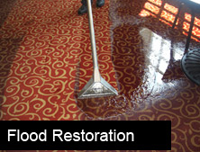 Flood Cleaning
